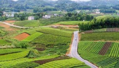 农村市场环境正在逐步改善